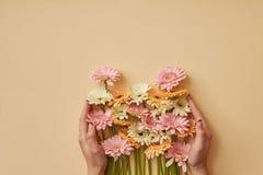 Un mazzo della ragazza variopinta delle gerbere tiene in mani su un fondo di carta giallo Fotografie Stock
