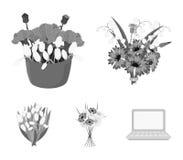 Un mazzo delle icone monocromatiche dei fiori freschi nella raccolta dell'insieme per progettazione Vario web delle azione di sim Immagine Stock