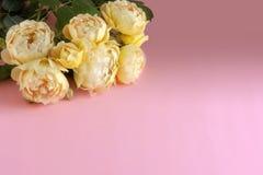Un mazzo delle rose gialle della peonia su un fondo pastello delicatamente rosa con lo spazio della copia Concetto minimo del fio fotografia stock