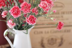 Un mazzo di bei fiori in una brocca immagine stock libera da diritti