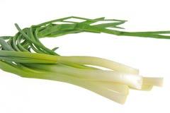 Un mazzo di cipolla verde isolato su bianco Fotografia Stock Libera da Diritti