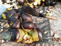 un mazzo di frutta che si siede su una tavola Fotografia Stock Libera da Diritti