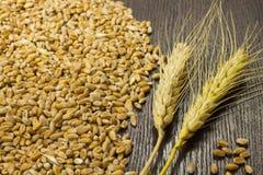 Un mazzo di grano e di grano del grano su fondo scuro Fotografie Stock Libere da Diritti