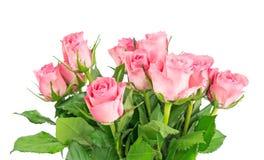 Un mazzo di rose rosa Fotografia Stock