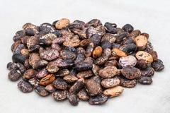 Un mazzo di semi del fagiolo sul fondo bianco del tessuto Immagini Stock