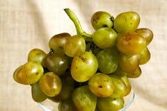 Un mazzo di uva succosa di verde giallo immagine stock libera da diritti