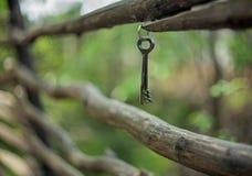 Un mazzo di vecchie chiavi d'annata della porta del ferro che appendono su un vecchio recinto rustico dei pali curvati con un fon immagine stock