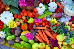 Un mazzo di verdure differenti Fotografia Stock