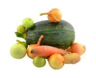 Un mazzo di verdure differenti Fotografie Stock