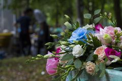 un mazzo festivo delle rose attirate dalla bellezza di un giorno caldo di autunno nel parco della città fotografia stock libera da diritti