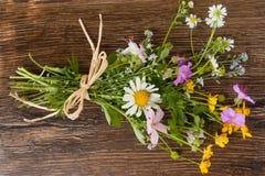 Un mazzo variopinto dei wildflowers di recente selezionati Fotografia Stock