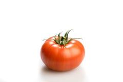 Un mensonge de regard réaliste de tomate d'isolement à un arrière-plan blanc Image libre de droits