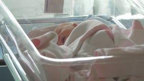 Un mensonge nouveau-né de bébé éveillé dans un chariot de bébé d'hôpital clips vidéos