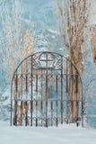 Un metal viejo adornó la cerca de rejilla del labrado-hierro cubierta con i Fotos de archivo libres de regalías