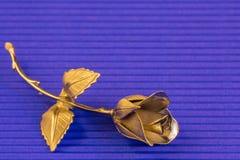 Un metallo è aumentato su un fondo blu per i saluti di festa Fotografie Stock