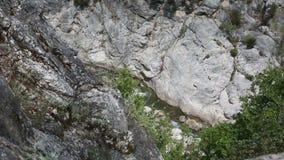 Un metraggio di una cascata e del lago della montagna video d archivio