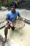 Un minero que llevaba a cabo pedazos de piedra lunar minó de un hoyo en Mitiyagoda en la costa oeste de Sri Lanka Fotos de archivo libres de regalías