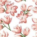 Un modèle de rose sensible et de fleur crème Épouser l'élément de conception d'abrégé sur vecteur de carte d'invitation photo libre de droits