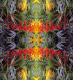 Un modello astratto dei fiori e delle foglie Fotografia Stock