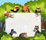Un modello degli animali selvatici Immagine Stock Libera da Diritti