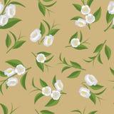 Un modelo de repetición de flores y de hojas de té verdes Imágenes de archivo libres de regalías