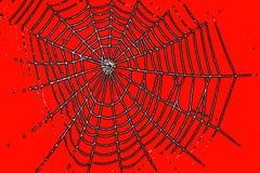 Un modelo del Web de araña para el color de la naranja de Halloween Imágenes de archivo libres de regalías