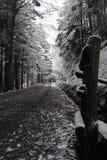 Un modo nella neve fotografia stock libera da diritti