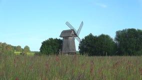 Un molino de viento viejo en un prado en una mañana de junio Mikhailovskoe, montañas de Pushkin Rusia almacen de video