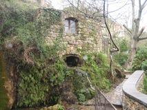 Un molino viejo cubierto con la hiedra y otras plantas Imagenes de archivo