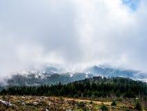 Un moment de la vision claire Forêt-Noire images stock
