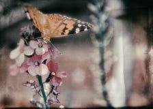Un momento de resto Foto de archivo libre de regalías