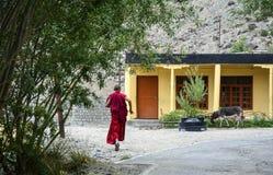 Un monaco al tempio tibetano antico immagini stock libere da diritti