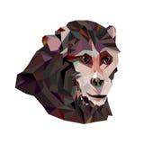 Un mono Imagen poligonal Vector Foto de archivo libre de regalías