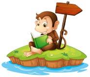 Un mono que lee un libro en una isla Imagen de archivo libre de regalías