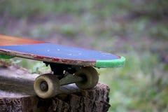 Un monopatín se coloca en un tocón de madera en el bosque Imagenes de archivo