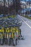 Un montón de bicis amarillas Foto de archivo libre de regalías