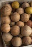 Un montón de bolas de madera del color marrón claro Imagenes de archivo