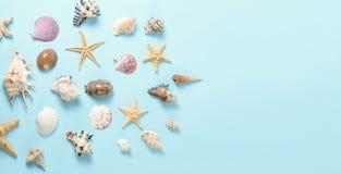 Un montón de diversas conchas marinas en un fondo azul Contexto temático de la playa para la publicidad de la plantilla de la age Fotos de archivo libres de regalías
