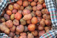 Un montón de patatas rojas Fotografía de archivo