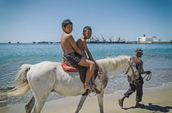 Un montar a caballo en la playa Fotografía de archivo libre de regalías