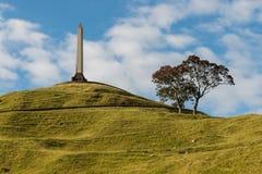 Un monument de colline d'arbre à Auckland Photos stock