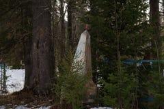Un monumento viejo abandonado con una estrella roja que miente entre los árboles Fotos de archivo