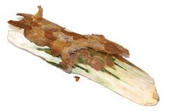 Un morceau de bois, écorce de pin, écorcent les planches enroulées et en bois, isolat Images stock