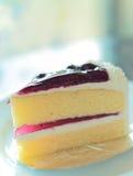 Gâteau au fromage de myrtille Image stock