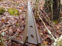 Un morceau de rails dans la forêt photographie stock libre de droits