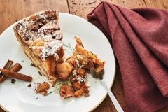 Un morceau de tarte aux pommes faite maison photographie stock libre de droits