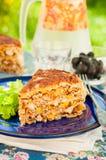 Un morceau de tarte mexicain de tortilla de poulet et de maïs Photographie stock libre de droits