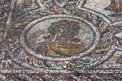 Un mosaico a Volubilis in primavera di rappresentazione del Marocco, medaglione dal mosaico delle quattro stagioni Fotografia Stock