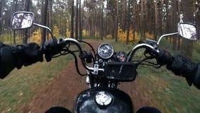 Un motociclista guida attraverso la foresta, movimento lento archivi video