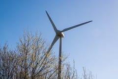 Un moulin à vent vu au-dessus des arbres fleurissants en premier ressort Image stock